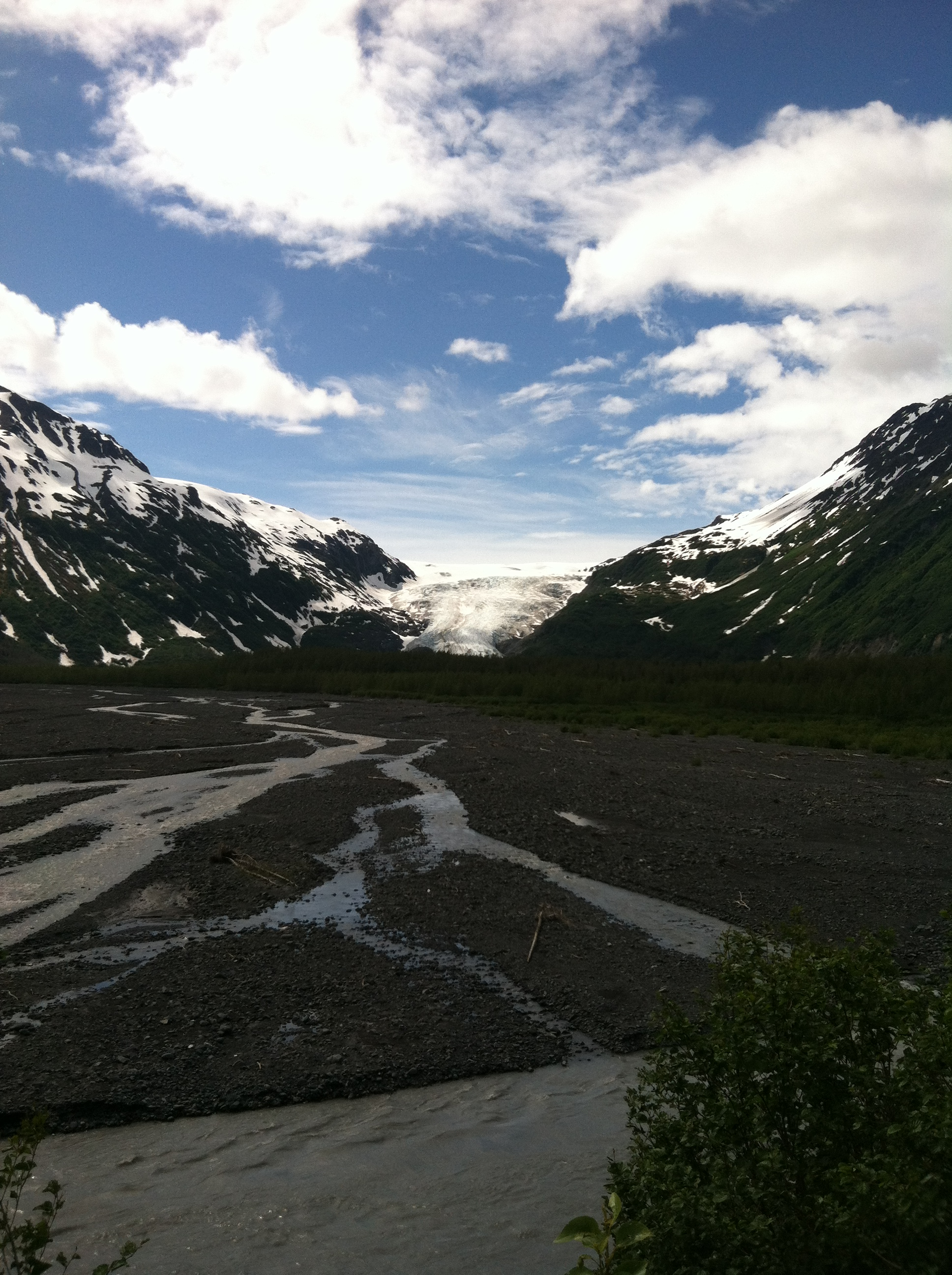 Kenai Fjords National Park Exit Glacier otisthethirstydog